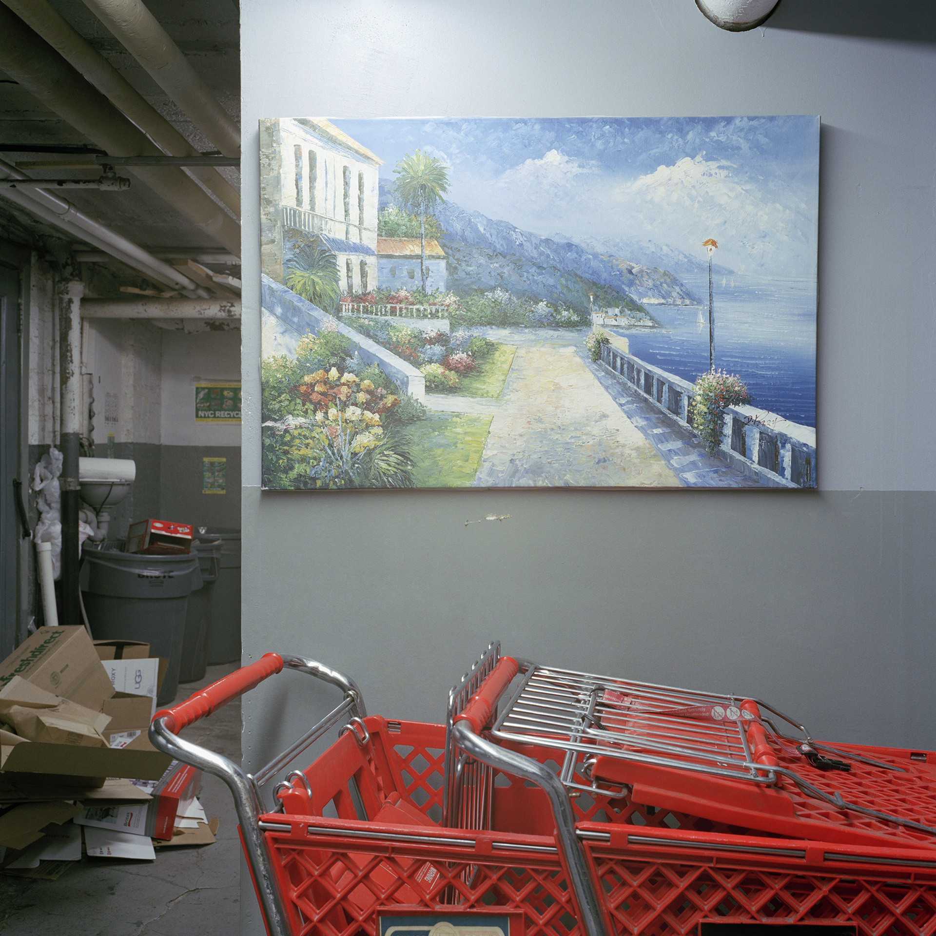 "untitled 42 (shopping cart) : 2011, 16""x16"", from the series 'Basement Sanctuaries'"