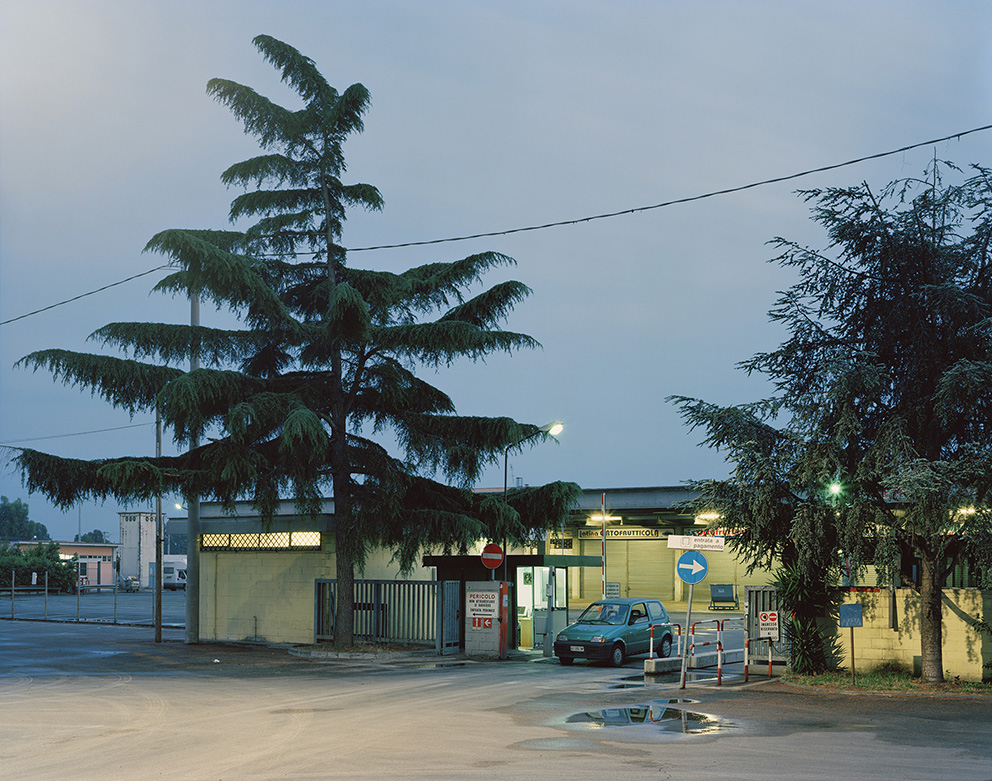 Olim Palus : The general market during the night, Latina, 2011.
